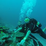 Diving Bluetribe Moofushi Photo