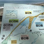 Φωτογραφία: Dungeness National Wildlife Refuge