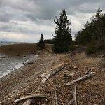 ภาพถ่ายของ Macgregor Point Provincial Park