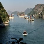 Foto de Halong Bay Tours