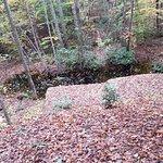 Stafford Civil War Park-billede