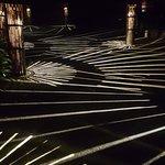 Фотография Ночное сафари