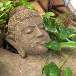 Thai Botanico Foto