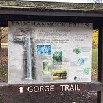 Taughannock Falls State Park의 사진