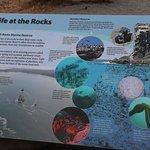 Bilde fra Battle Rock Park