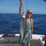 Zdjęcie Sea Horse Private Charters