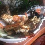 Blue Lobster resmi