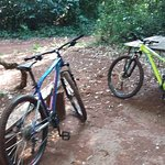 Iguazu Bike & Adventure Tours照片