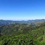 Blue Mountain Peak Photo