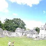 Mayan Traditions Day Tours照片