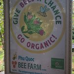Phu Quoc Bee Farm Cafe Photo