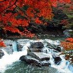 Zdjęcie Okutsu Valley