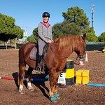 Φωτογραφία: Pinetrees Horse Riding