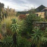 Landscape - Ednovean Farm Photo