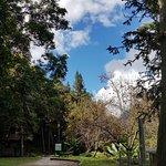 Photo of Walami Trail