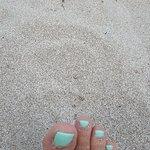 Φωτογραφία: Παραλία Βοϊδοκοιλιά