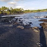 Punaluu Black Sand Beach의 사진
