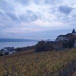 Foto de Corniche Lavaux Vineyards