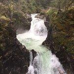 Little Qualicum Falls Provincial Park照片