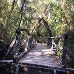Photo of Chiloe National Park
