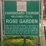 Φωτογραφία: Chandigarh Rose Garden
