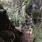 Bilde fra Uramiga Falls