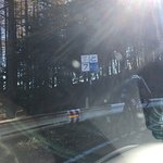 Photo of Irohazaka Route