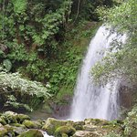 Ảnh về Nam Kat Waterfall
