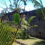 Bras d'Eau National Park Photo