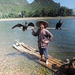 Zdjęcie Cormorant Fishing