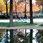 首爾森林公園照片