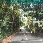 Fotografija – Khao Yai National Park