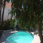 Pool - Blackheath Lodge Photo