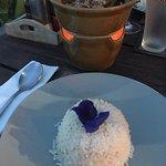 Фотография Rice Paddy
