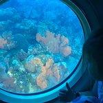 Foto de Atlantis Submarines