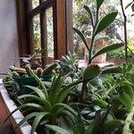 Casadulce pasteleria-cafe Photo
