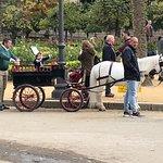 Bild från Horse & Carriage Tour