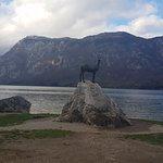 Фотография Lake Bohinj