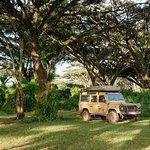 Фотография Shaw Safaris - Day Tours