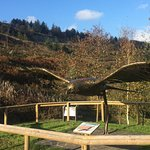 Foto Bwlch Nant yr Arian Forest Visitor Centre