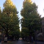 ภาพถ่ายของ มหาวิทยาลัยโตเกียว