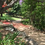 Lake Parramatta Reserve Foto