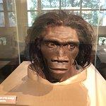 Foto di Museo Nazionale di Storia Naturale Smithsonian