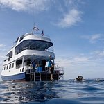 Boat rides very high in the water. L3 sun deck, L2 eating/socialising area, L1 dive deck and guest cabins