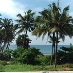 Bilde fra Varkala Beach