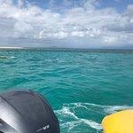 Φωτογραφία: Ocean Safari