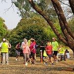 Pretoria National Botanical Garden Picture