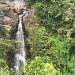 صورة فوتوغرافية لـ Pipiwai Trail