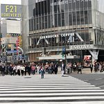 Photo of Shibuya Crossing