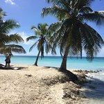 Foto de Isla Saona